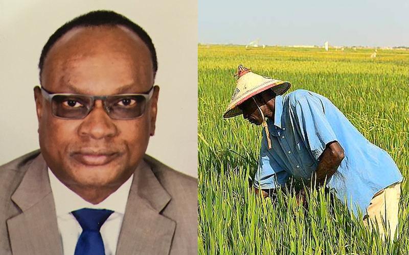 Performance agricole du Sénégal : Données et argumentaires