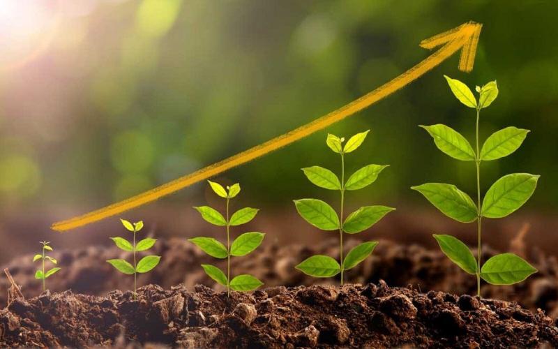 Se former au Fonds vert pour le climat