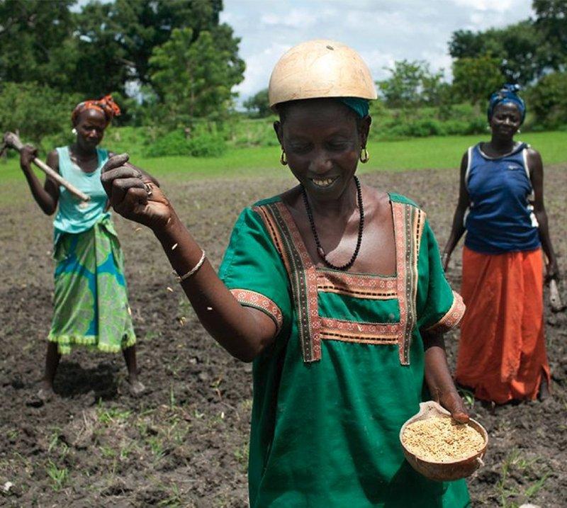 L'agriculture doit nourrir le monde
